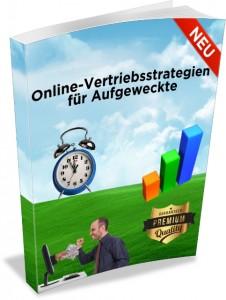 Ebook-Cover_WebRegioStar-Online-Verkaufsstrategien